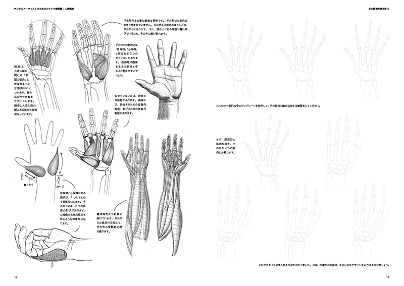 1440399490skws_anatomy02